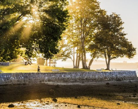Stanley Park Runner on Sea Wall